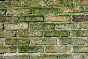 isolatie problematiek muur